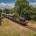Southern Summer steam