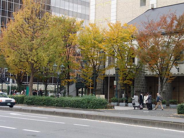 An autumn street in Sendai