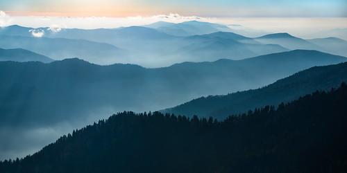 shaconage landofbluesmoke gsmnp greatsmokymountains tennessee mountains mtleconte alumcaveblufftrail nationalpark nature trees