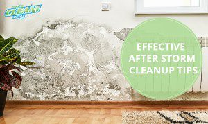 Just published a new article: Effective After Storm Cleanup Tips https://t.co/wgbjV8fRIj #Dry #housecleaning #afterstormcleanup #Electrical https://t.co/VRgZRkHsF9