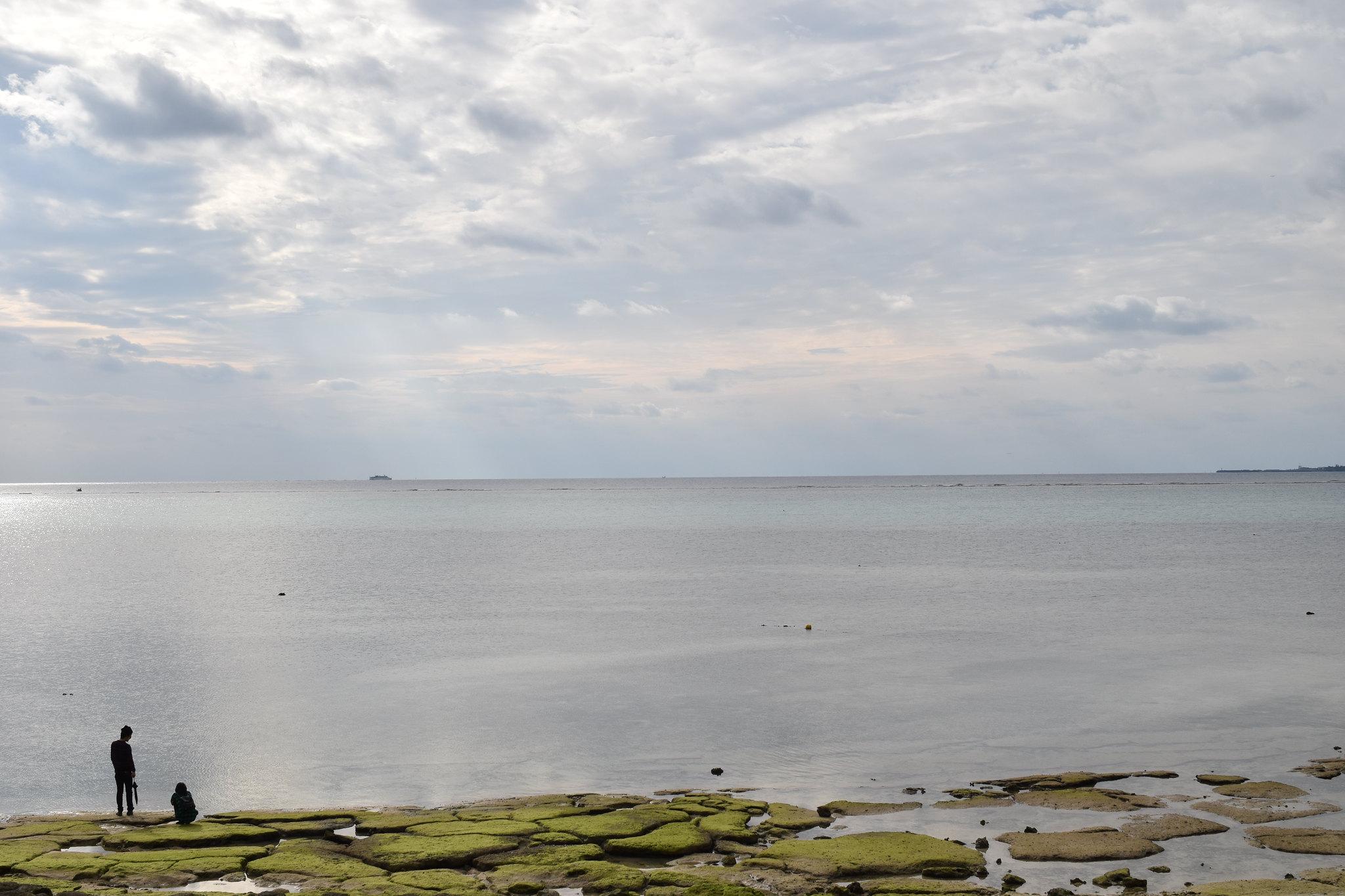 沖縄 本部