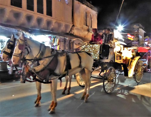 i-pushkar-ville-soirée (14)