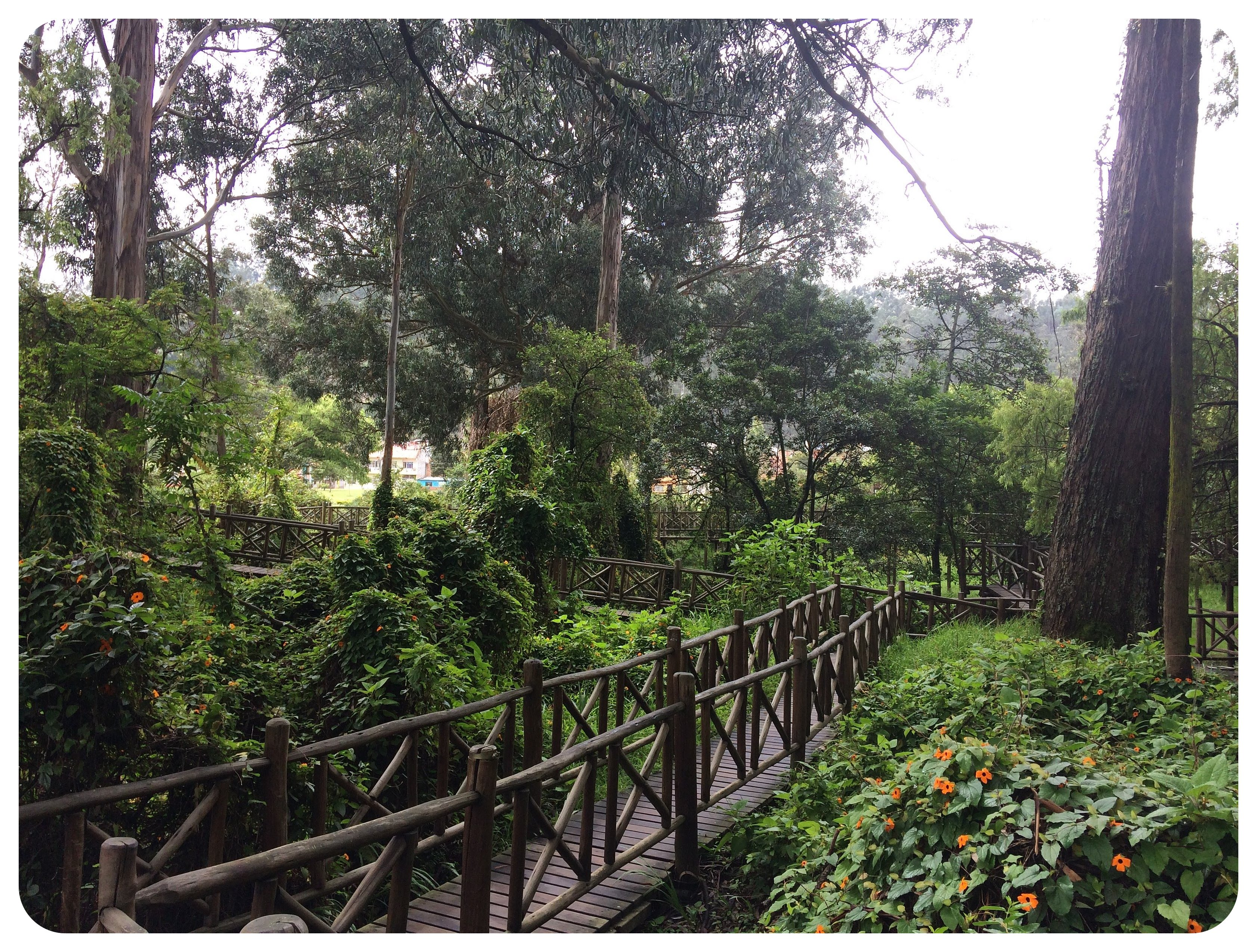cuenca park