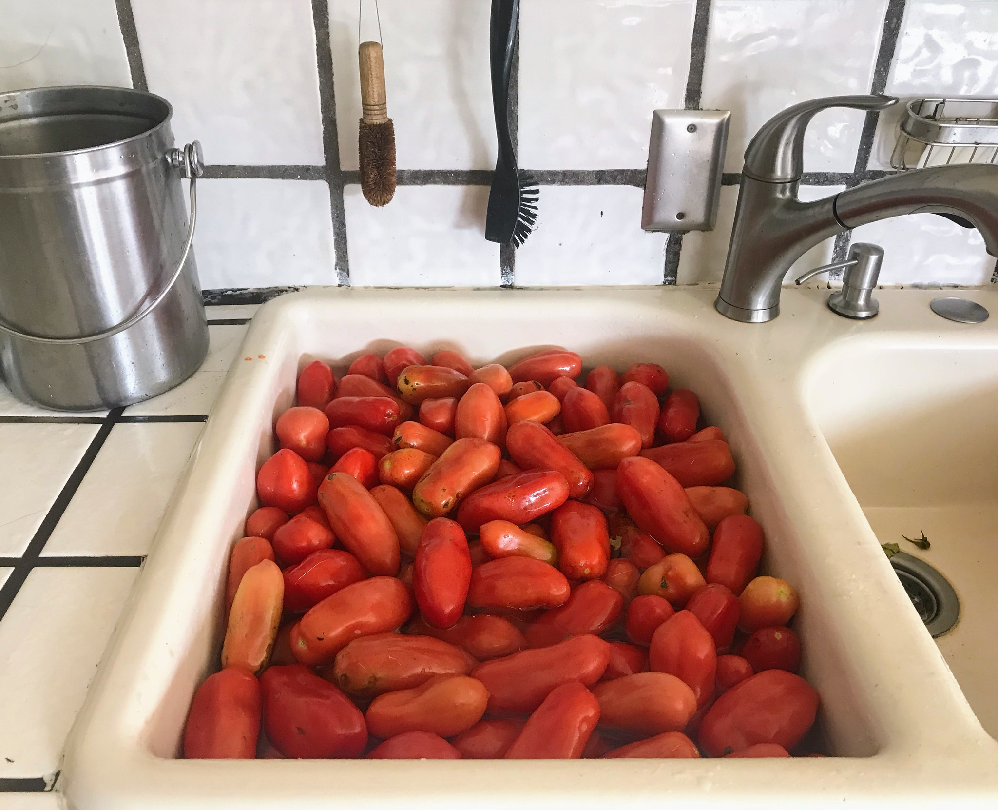 A sink full of tomatoes