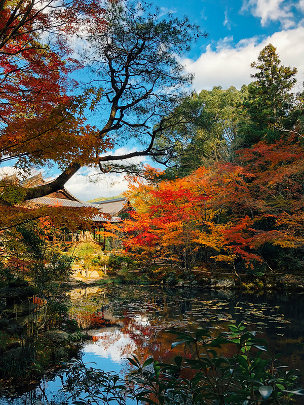 Kyoto2_08
