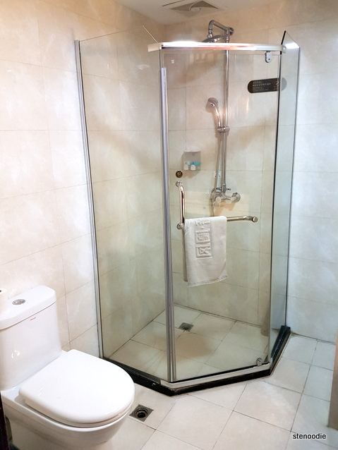Fengting International Hotel shower
