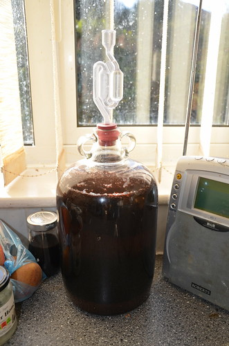elderberry wine brewing Nov 17