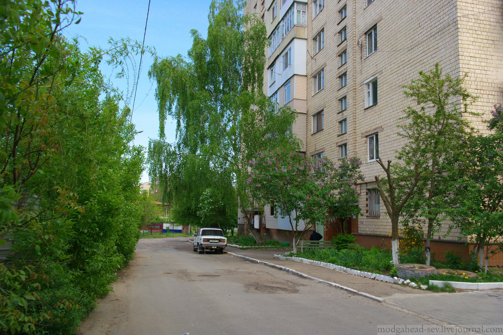 Chernovtsi-12