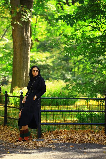 Central Park Tanvii.com 10