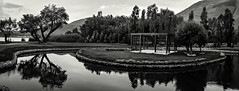 bw_S5Y6334-Pano