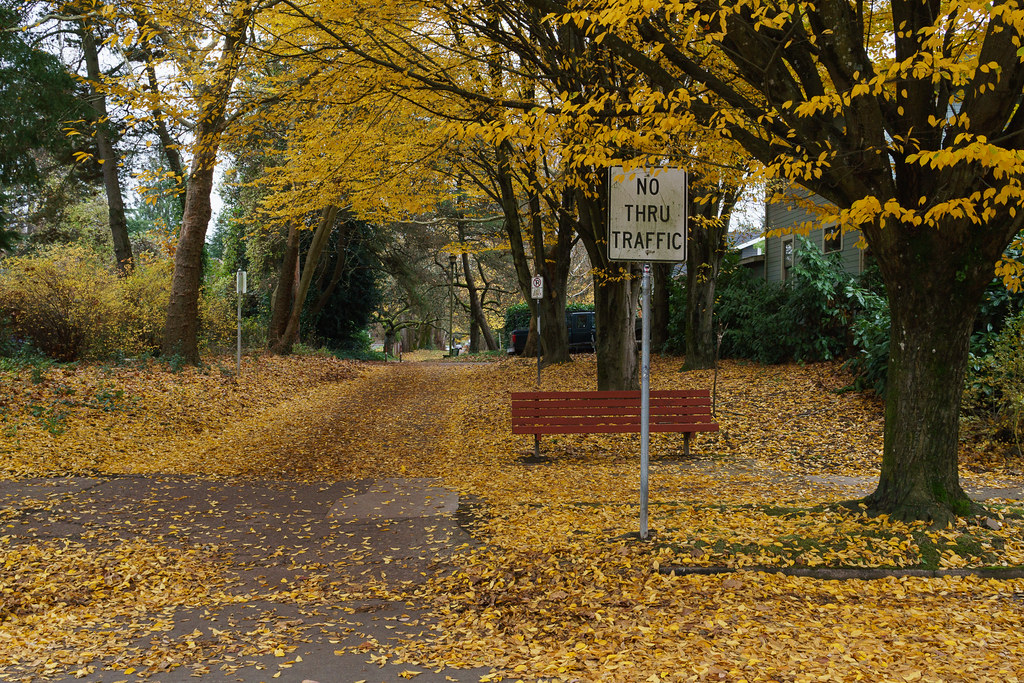 A sign indicates no thru traffic on the leaf-covered Klickitat Street in the Irvington neighborhood of Portland, Oregon