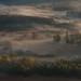 Airuno, nebbia nei boschi by mauro.cagna