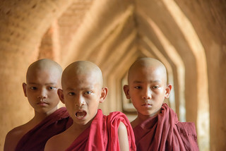 Myanmar,  Novice monks._