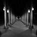 Fear of the dark by David Khutsishvili