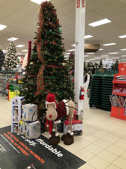 Christmas 2017, Nova Scotia