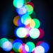 Christmas Tree by Paul Kaye