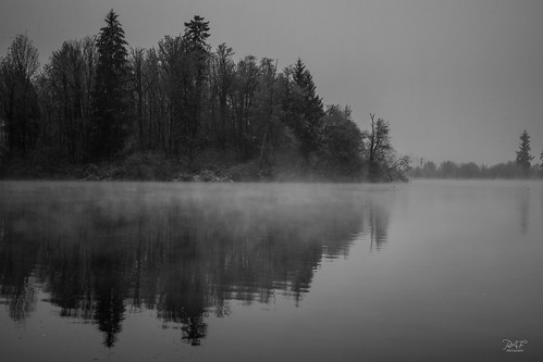 landscape landscapephotography duncan duncanbc cobblehill cowichanvalley cowichan clouds canada bc britishcolumbia blackandwhite bw lake douganlake water tree rural trees mist reflections reflection ripple