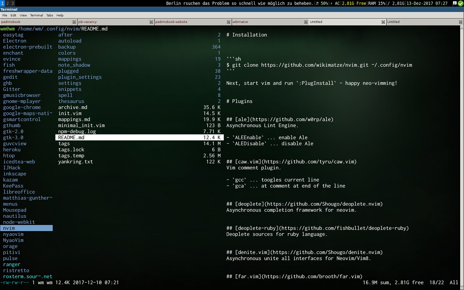 Ranger a terminal browser for Vim