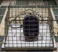 Catsle heater