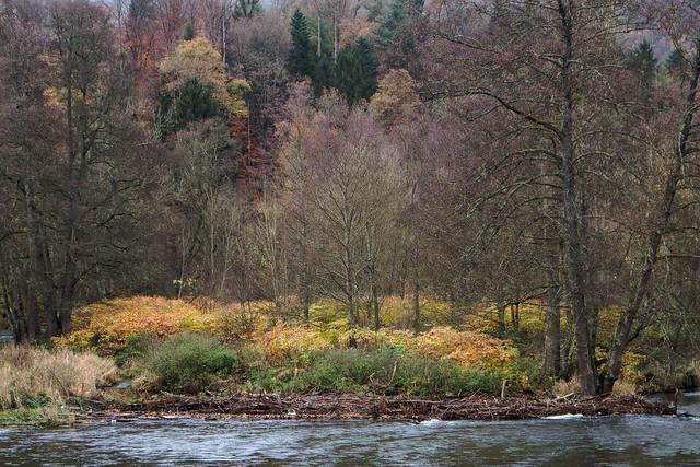 Breathtaking autumn colours