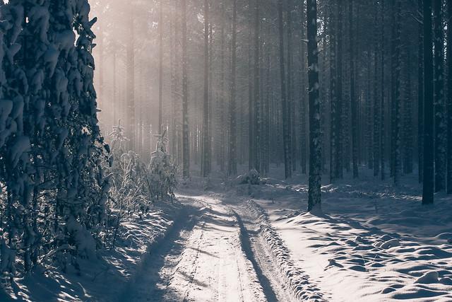 Talvinen tie Juuassa