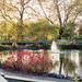 bishops park Londres