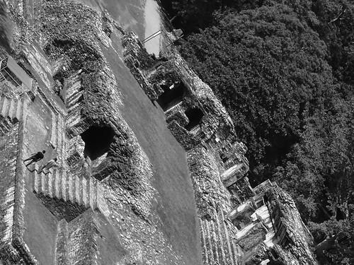 Palenque Constructivista No.7 OP 77