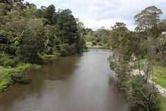 Yarra River from Warrandyte Bridge