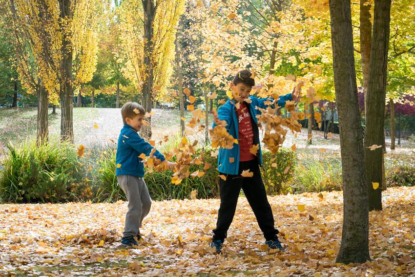 Guerra de hojas Otoño