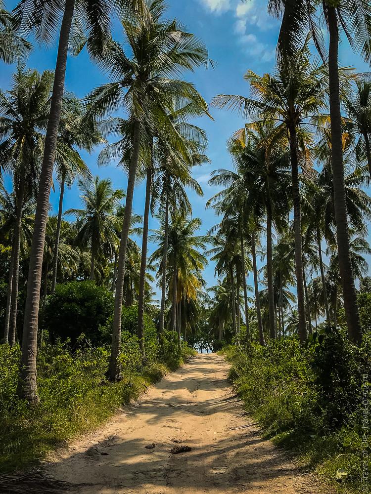 05.11-Racha-Island-Thailand-canon-2716