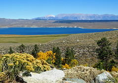 McGee Creek View, Crowley Lake and White Mountains, CA 10-17