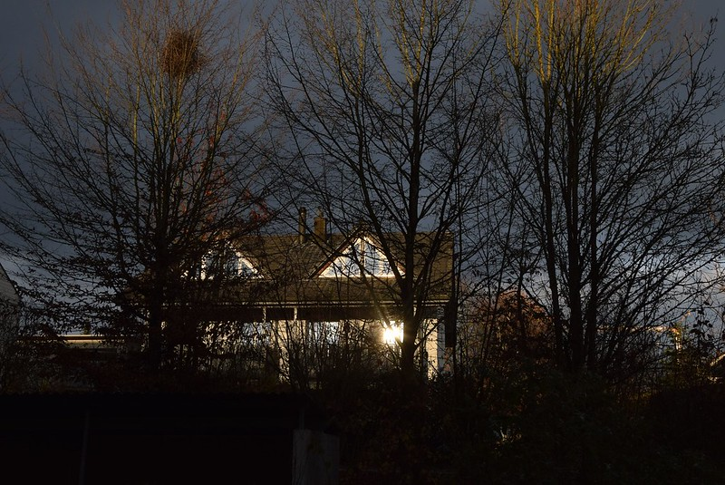 Sunlight 18.11 (4)