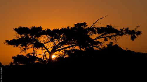 Sunset in Pinamar, Buenos Aires Province - Argentina - 1741