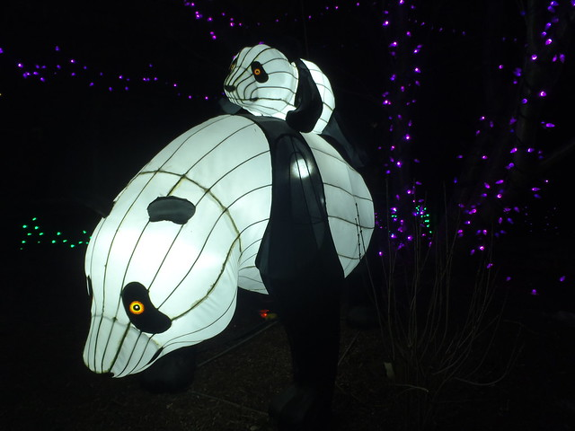 YYC Zoo Lights 2017