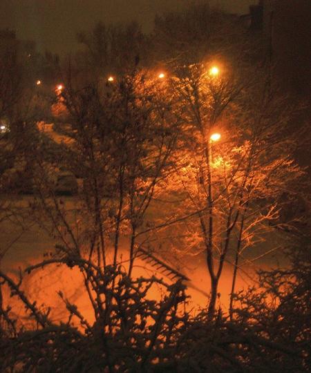 naktis-ziema