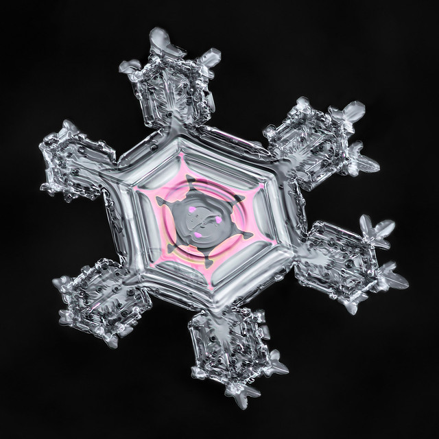 Snowflake-a-Day No. 7