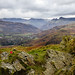 View towards the Langdales from Loughrigg Fell