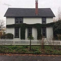 Pi shaped hedge.  House of math?