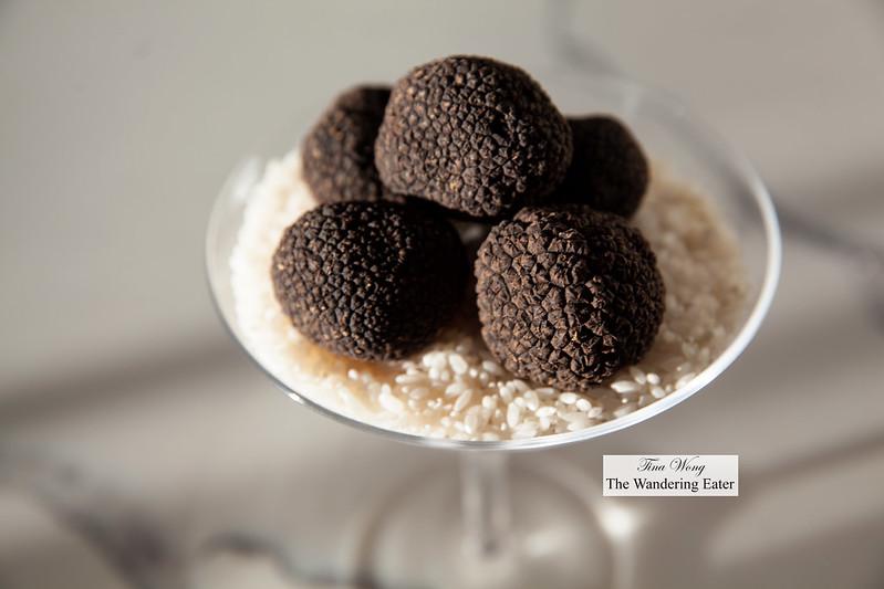 Fresh whole Perigord black truffles