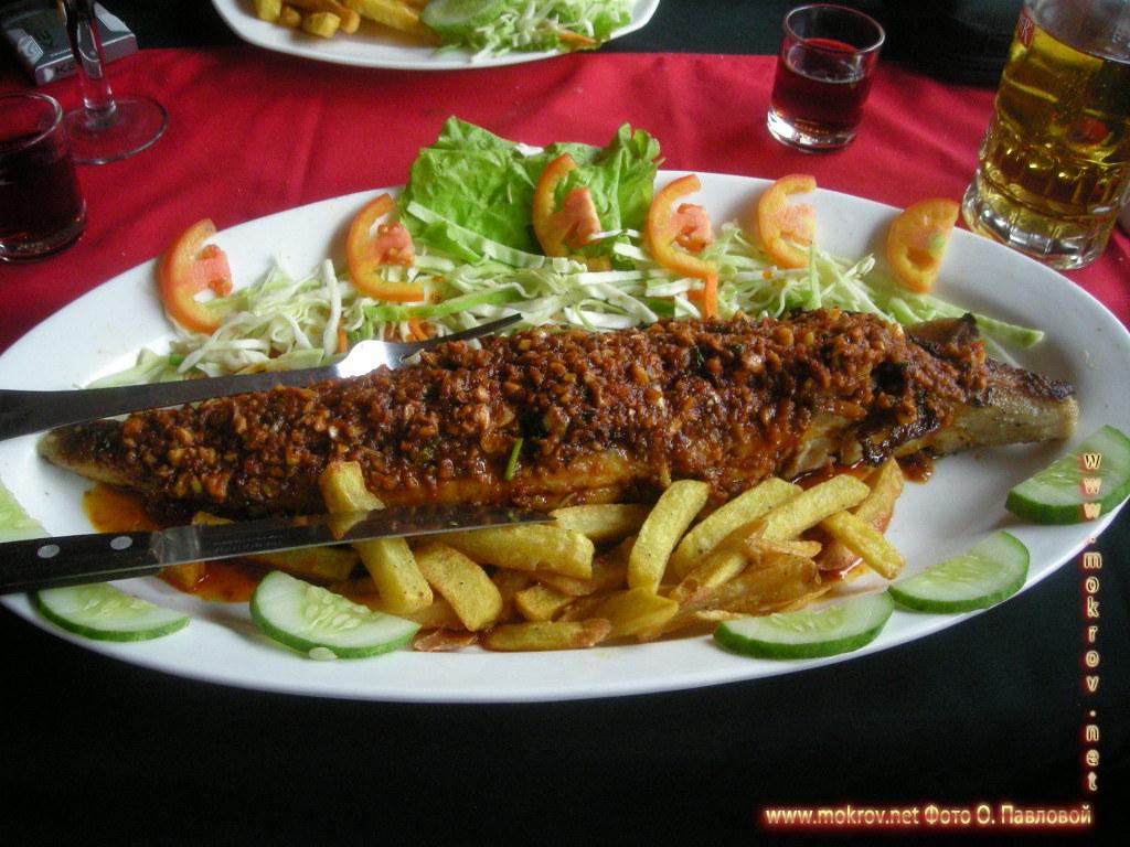 Зто кингфиш - король рыба