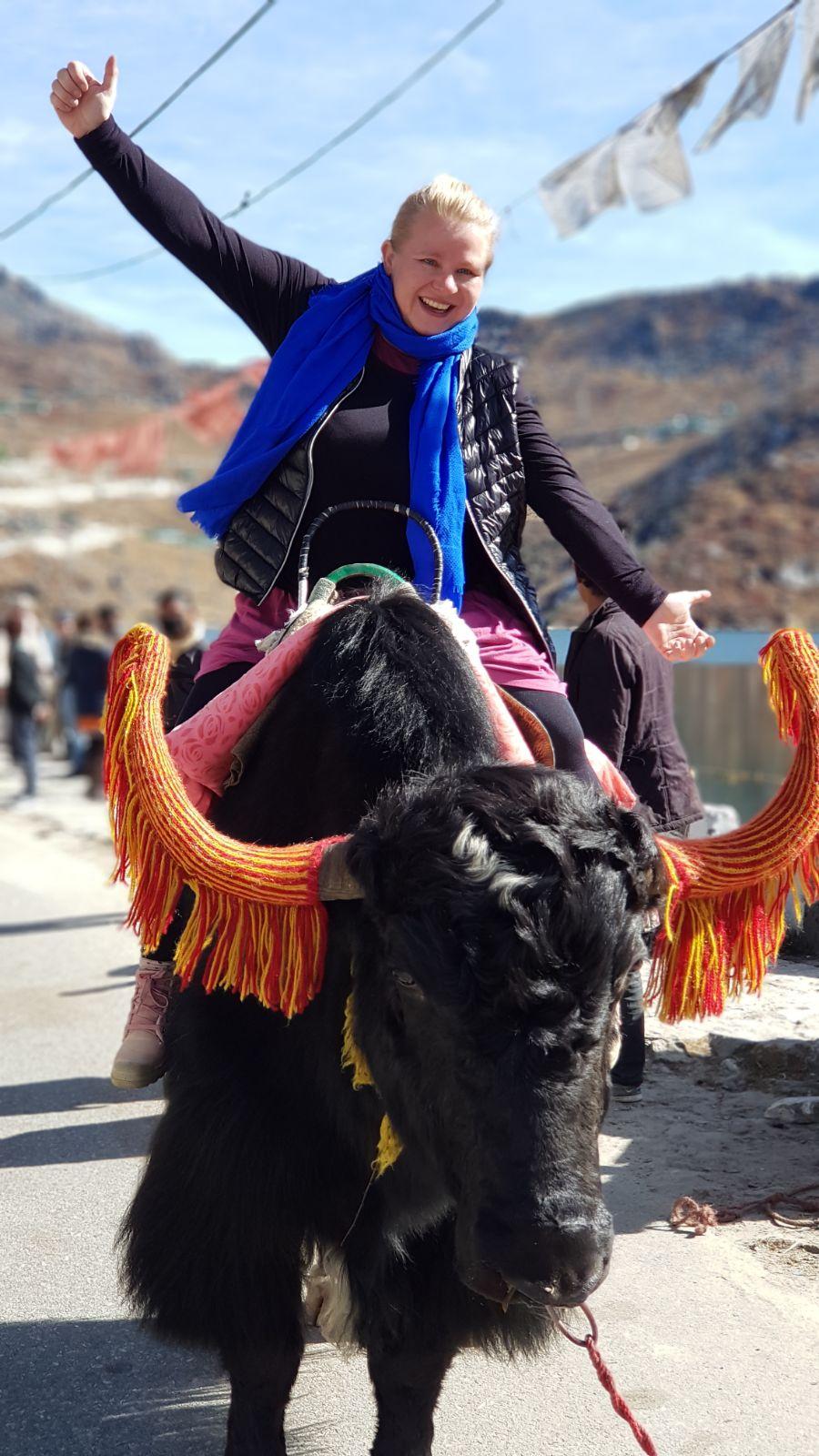 Marlene beim Reiten auf einem Yak im Himalaya