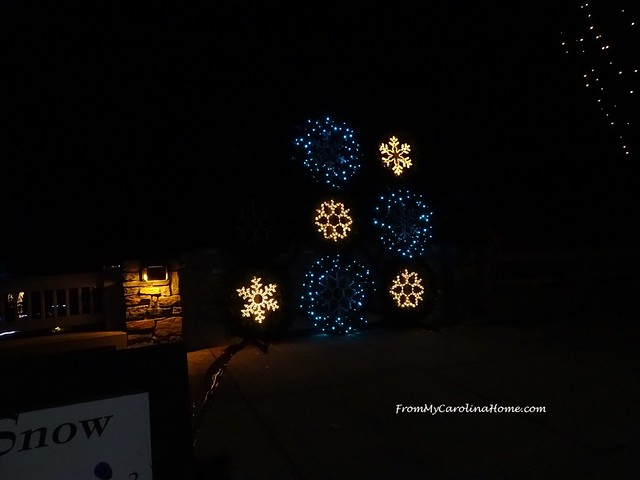 Winter Lights at the NC Arboretum ~ From My Carolina Home