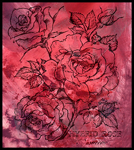 Hybrid Rose Stamp On An Alcohol Ink Background