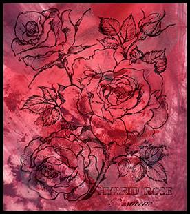 Hybrid Rose Stamp On An Alcohol Ink Background