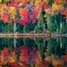 Autumn Reflections by Tracy Munson Photography