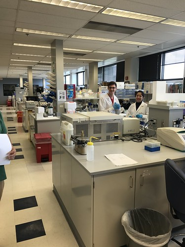 lab environment with 2 gloved people behind lab equipment
