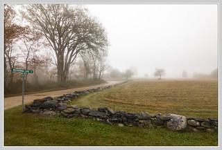 Merriman Cove Fog