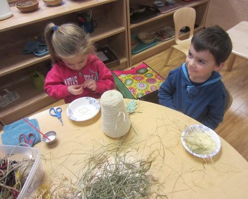 building a bird nest