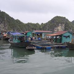 Fishing Boats Vietnam