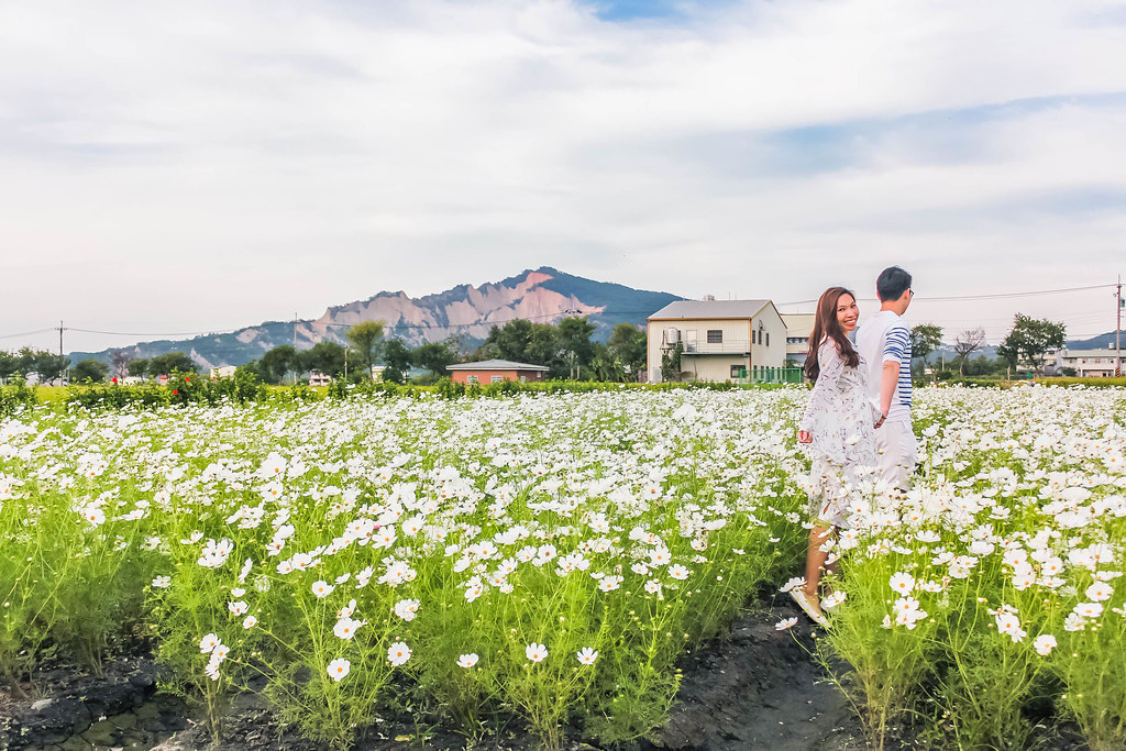 zhong-she-guan-guang-flower-market-alexisjetsets-17